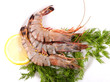 Plate with Tiger Prawns