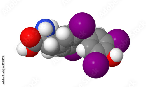 Thyroxine (T4) CPK spacefill molecular model