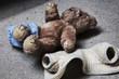 Leinwanddruck Bild - stripped teddy