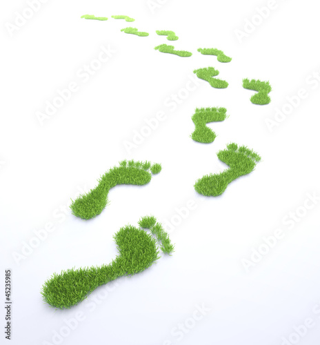 Ecological footprint concept illustration