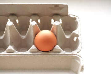 one brown egg in packing