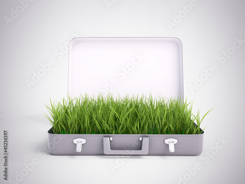 Grass growing out of a suitcase