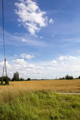 Strohfeld mit Hügel