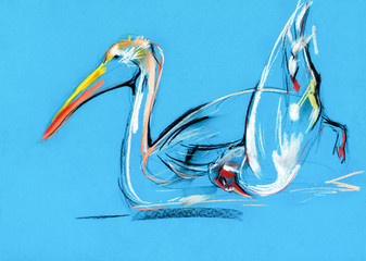 pelican painting