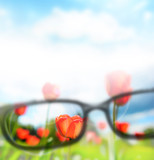 Fototapety Reading eyeglasses and beautiful nature view. Sight care concept