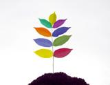 Symbolfoto zum Thema Franchise oder Wachstum