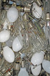 Old glass bulbs burned trash in the landfill of waste