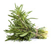 Rosemary bunch on the white background