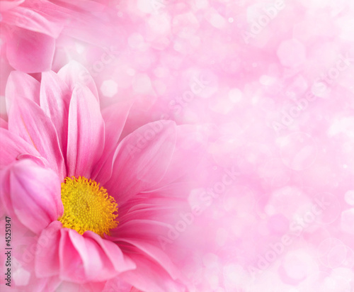 Abstract floral backgrounds for your design