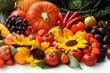 Autumn vitamins