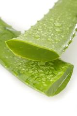 aloe vera sliced leaf