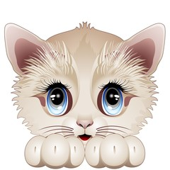 Cute Kitten Cartoon Character-Gatto Gattino Cucciolo-Vector