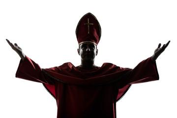 man cardinal bishop silhouette saluting blessing