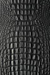 Croco schwarz