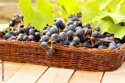 tasty and fresh grape