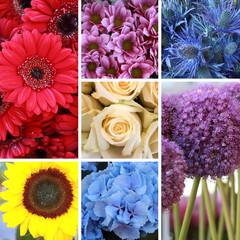Blumen gemischt gekachelt