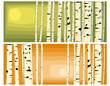 Horizontal illustrations of trunks birches.