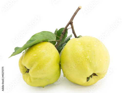 quince, apple quince, apple