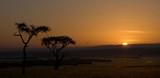 Fototapete Masai - Savanna - Naturlandschaft