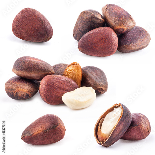 Collection of Pine nuts isolated on white background