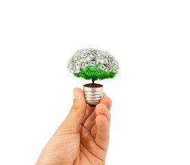 eco concept light bulb with plant inside