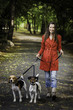 Young woman and his dogs are walking in the park