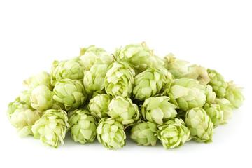 fresh hop