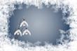 Schneeglöckchen, Schneeflocken und Eiskristalle