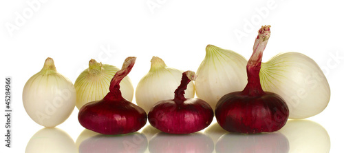 white and red onion isolated on white background