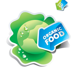 Icon cabbage with the arrow by organic food. Vector illustration