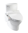 Nice automatic toilet bowl the sanitary ware isolated