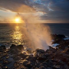 Souffleur au crépuscule - Ile de La Réunion