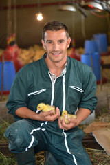 Cheerful farmer holding ducklings in his arms