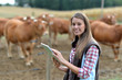 Woman farmer in front of cattle using tablet