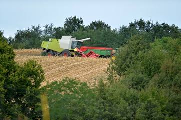 View of cropper working in field