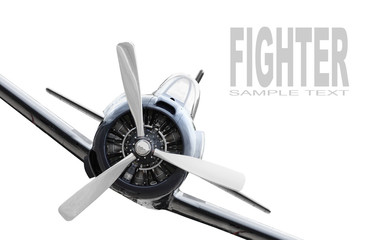 The Fighter. War bird close up on white background.