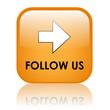 FOLLOW US Web Button (like recommend social media marketing)