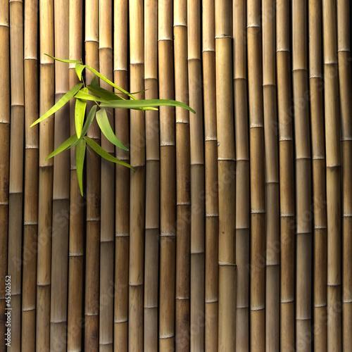Fototapeten,bambu,asien,meditation,mediterane küche