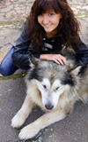 Dog Alaskan Malamute and young woman