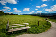 Wooden Bench at Beautiful Countryside