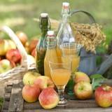 Fototapety Erntezeit, Äpfel