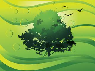 Environment, illustration