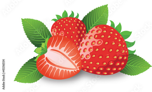 Strawberry, illustration