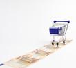 Einkaufswagen auf Euroscheinen