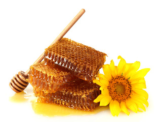 sweet honeycombs with honey, wooden drizzler and sunflower,