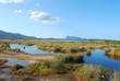 The pond of San Teodoro - Sardinia - Italy - 587