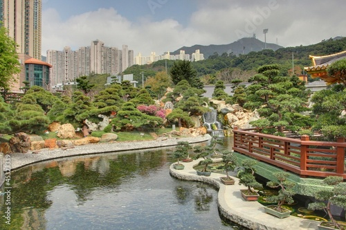 jardin de bonsai à hong kong