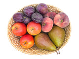 Fruit Basket Top