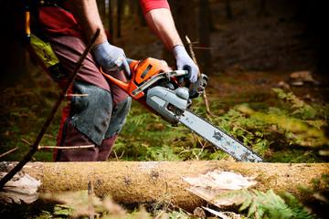 Waldarbeiterin schneidet liegendes Holz - Entasten