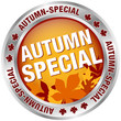 """Button """"Autumn-Special"""" Red/Brown/Silver"""